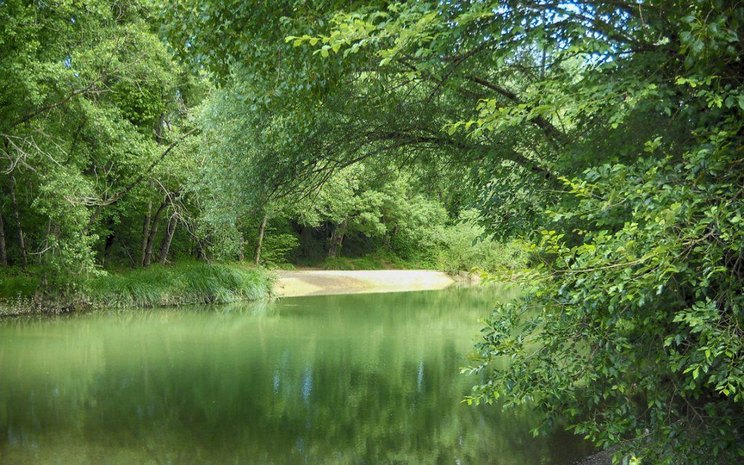 """Il fiume Merse e """"Castiglion che Dio sol sa"""""""