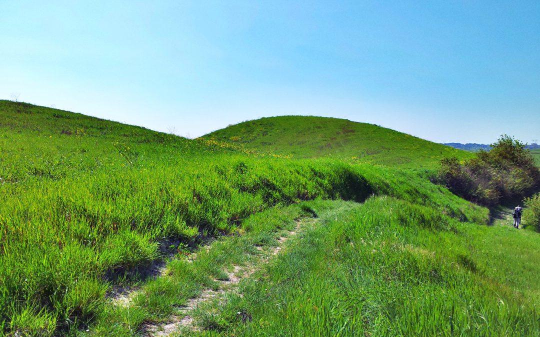 """Toscana terra di """"cammini"""": sulle antiche vie, tra natura e cultura"""
